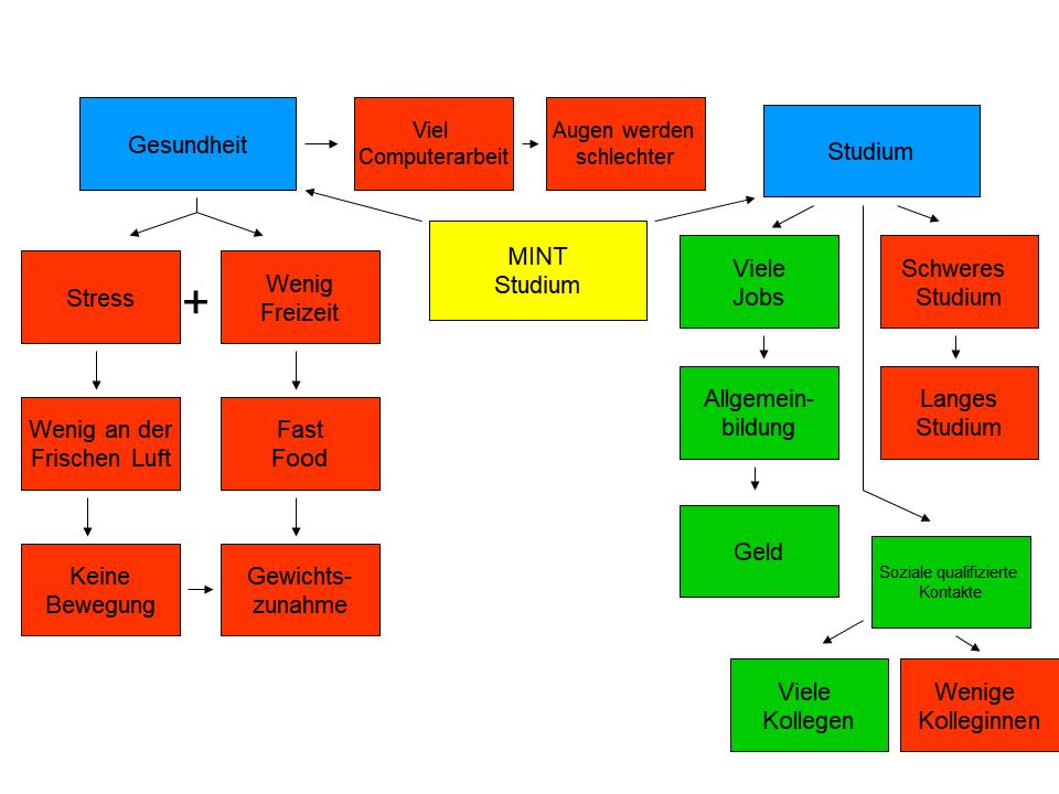 Assoziationen zum Studium eines MINT-Fachs, dargestellt in Form einer Mindmap.