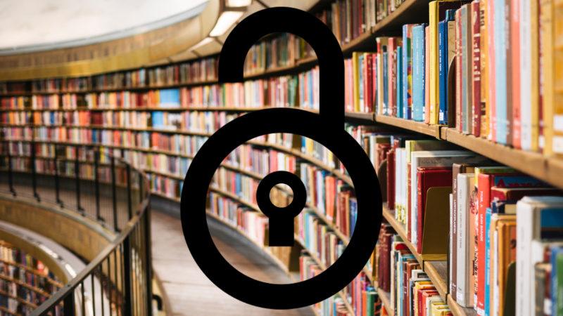 Bibliothek und Schloss-Icon